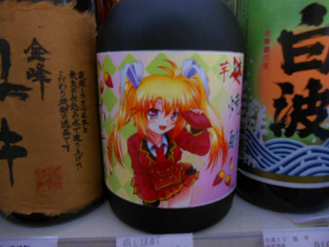 f:id:kabutoyama-tigers:20121220121623j:image