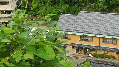 f:id:kabutoyama-tigers:20121227134958j:image