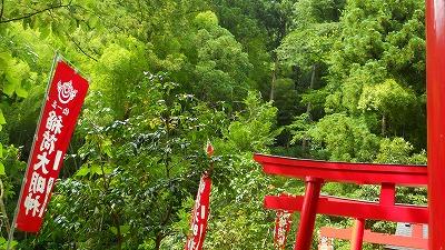 f:id:kabutoyama-tigers:20121227211952j:image