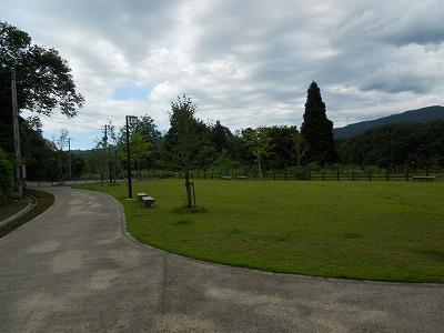 f:id:kabutoyama-tigers:20121228223809j:image