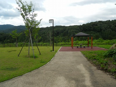 f:id:kabutoyama-tigers:20121228223810j:image