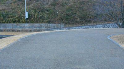 f:id:kabutoyama-tigers:20121231201225j:image