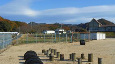 f:id:kabutoyama-tigers:20130109080027j:image