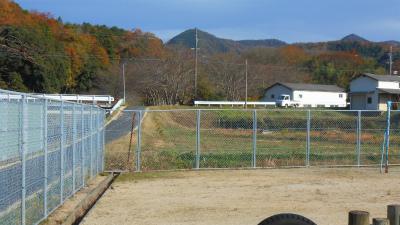 f:id:kabutoyama-tigers:20130109095841j:image