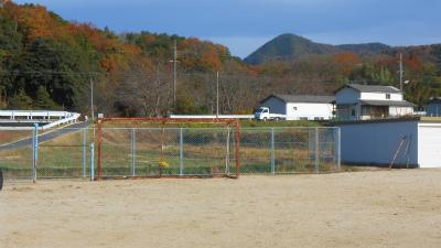 f:id:kabutoyama-tigers:20130109100036j:image