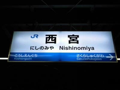 f:id:kabutoyama-tigers:20130113113621j:image