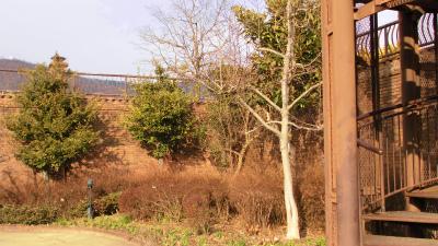 f:id:kabutoyama-tigers:20130120151137j:image