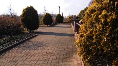 f:id:kabutoyama-tigers:20130123145821j:image