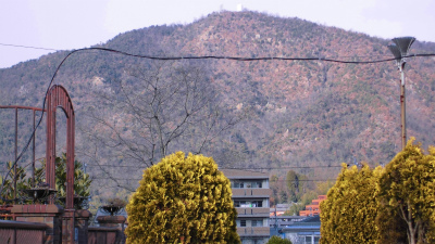 f:id:kabutoyama-tigers:20130123170322j:image