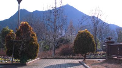 f:id:kabutoyama-tigers:20130123172310j:image