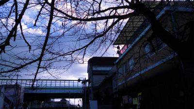 f:id:kabutoyama-tigers:20130218210231j:image