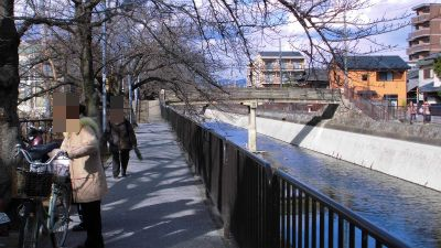 f:id:kabutoyama-tigers:20130227211731j:image