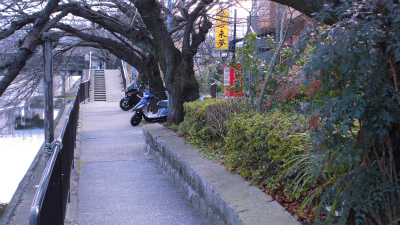 f:id:kabutoyama-tigers:20130228080816j:image