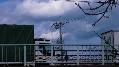 f:id:kabutoyama-tigers:20130228081435j:image
