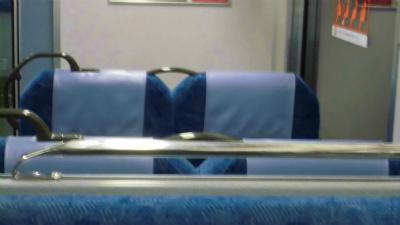 f:id:kabutoyama-tigers:20130304211226j:image
