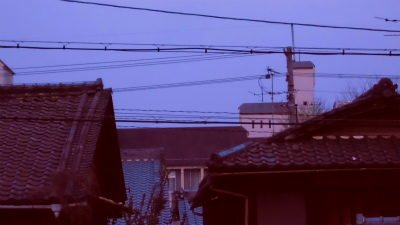 f:id:kabutoyama-tigers:20130406162936j:image