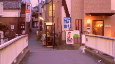 f:id:kabutoyama-tigers:20130406192608j:image