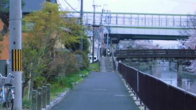 f:id:kabutoyama-tigers:20130406203836j:image
