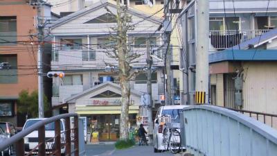 f:id:kabutoyama-tigers:20130406205349j:image
