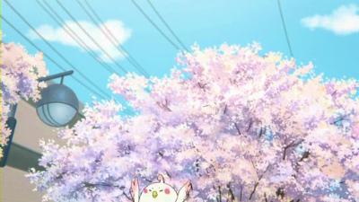 f:id:kabutoyama-tigers:20130406211508j:image
