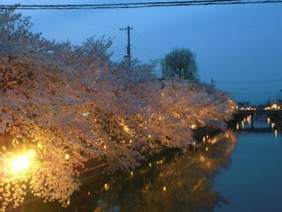 f:id:kabutoyama-tigers:20130406222636j:image