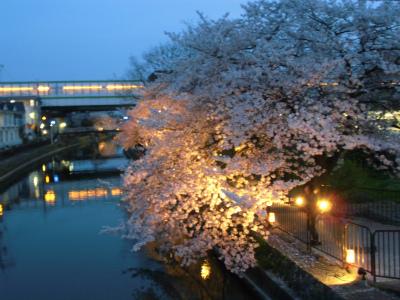 f:id:kabutoyama-tigers:20130406222637j:image