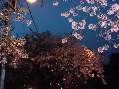 f:id:kabutoyama-tigers:20130406222638j:image