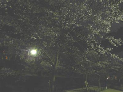 f:id:kabutoyama-tigers:20130406225221j:image