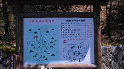 f:id:kabutoyama-tigers:20130414204322j:image