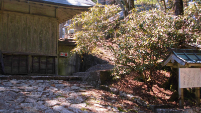 f:id:kabutoyama-tigers:20130415061512j:image