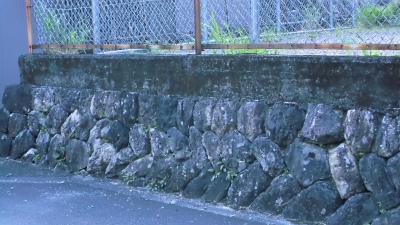 f:id:kabutoyama-tigers:20130415195412j:image