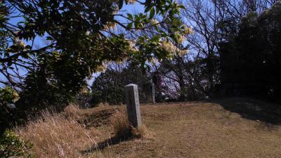 f:id:kabutoyama-tigers:20130415203401j:image
