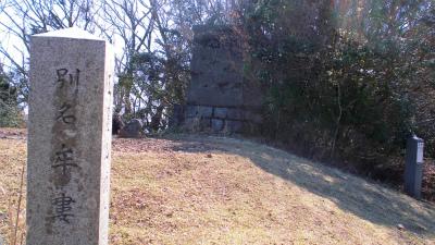 f:id:kabutoyama-tigers:20130416134445j:image