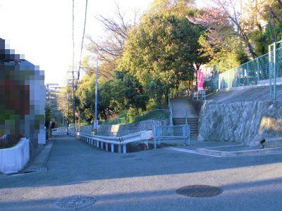 f:id:kabutoyama-tigers:20130416210353j:image
