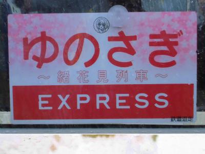 f:id:kabutoyama-tigers:20130430184308j:image