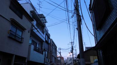 f:id:kabutoyama-tigers:20130525045301j:image