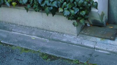 f:id:kabutoyama-tigers:20130525050120j:image