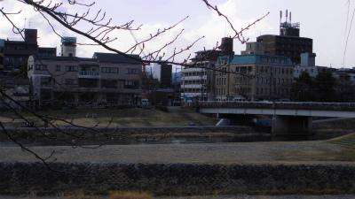 f:id:kabutoyama-tigers:20130526022650j:image