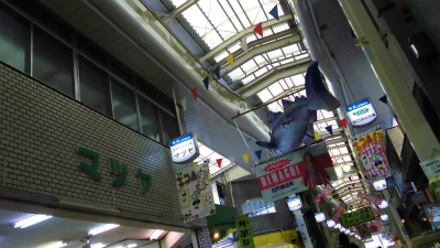 f:id:kabutoyama-tigers:20130526062054j:image