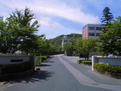 f:id:kabutoyama-tigers:20130609072514j:image
