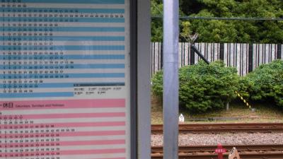 f:id:kabutoyama-tigers:20130624173121j:image