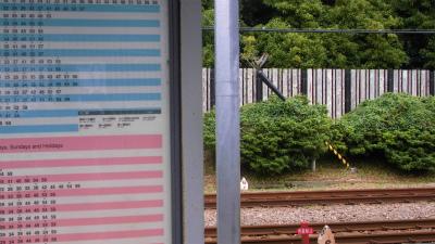f:id:kabutoyama-tigers:20130624175949j:image