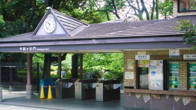 f:id:kabutoyama-tigers:20130625135308j:image