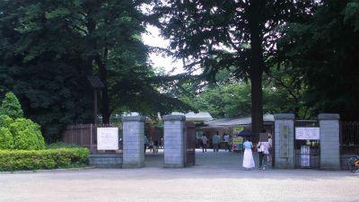 f:id:kabutoyama-tigers:20130630200152j:image