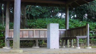 f:id:kabutoyama-tigers:20130703170604j:image