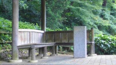 f:id:kabutoyama-tigers:20130705141309j:image