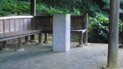 f:id:kabutoyama-tigers:20130705145248j:image