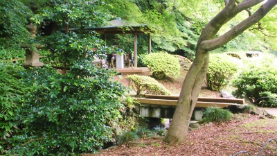 f:id:kabutoyama-tigers:20130705153104j:image