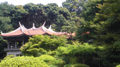 f:id:kabutoyama-tigers:20130705153826j:image