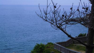 f:id:kabutoyama-tigers:20130708160553j:image